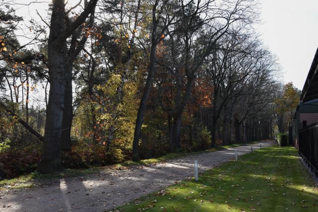 Fijne locatie in een rustige en bosrijke omgeving